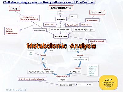 metabolomic-analysis